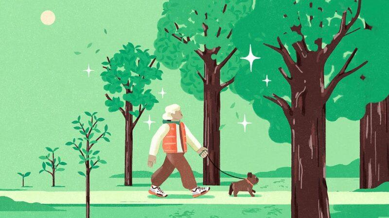 Envelhecimento inteligente é reconhecer problemas e se adaptar a eles